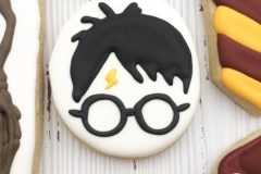 Harry Potter Face